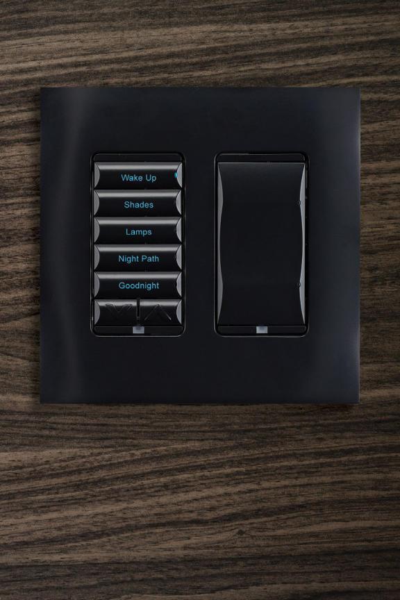 Wireless Lighting Controls & lighting brochure